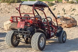 Off Road Buggy - 50093 prices