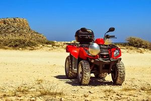 Off Road Buggy - 36330 options