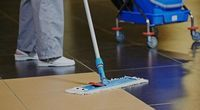 Regular Domestic Cleaning London - 65102 offers